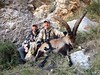 Spain Ibex Hunt & Driven Partridge Hunts 59