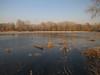 Ice, ice (aniko e) Tags: vekeritó debrecen winter ice lake frozen hiking outdoors hungary