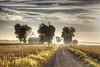 Farm House Along a Gravel Road (LarryHB) Tags: driving hdr horizontal photography fog farm rural missouri scottcounty tree summer house bins 2016 dawn landscape larrybraunphotography