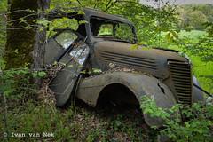 Le Renault (Ivan van Nek) Tags: nikond3200 nikon d3200 péguilhan renault rusty car abandoned hautegaronne 31 derailinator occitanie photographiehautegaronne photographehautegaronne