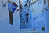 Chefchaouen, Morocco (Nicolay Abril) Tags: morocco architecture alleys flowerpots lantern women chaouen chauen xauen chefchaouen maroc bleu ruelles pots lanterne femmes chefchauen marruecos azúl arquitectura callejones macetas farol mujeres شفشاون، المغرب، الزرقاء، الهندسة المعمارية، الأزقة، والأواني، والفوانيس، والنساء،