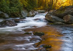 Golden Light on the Little River. (Bernie Kasper) Tags: art berniekasper gsmnp greatsmokymountainnationalpark cascade nature naturephotography usa tennesse river family fall light landscape reflections water waterfalls rocks trees unitedstates outdoor outside littleriver travel trail photography park old nikon new