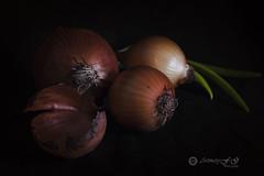 Proyecto 19/365 (Art.Mary) Tags: cebolla oignons proyecto365 bodegón stilllife naturemorte vegetales vegetables légumes canon onions