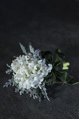 Hyacinthus (mellow_stuff) Tags: hyacinthus
