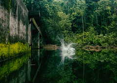 'Tibum' da paz ((J. Turner)) Tags: nature waterfall water green art peo people