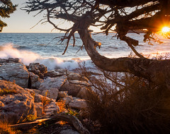 Autumn Sunset, Ocean Point, East Boothbay, Maine  -230196 (John Bald) Tags: oceanpoint shore waves crashingwave sunset horizon eastboothbay boothbay maine