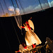 """2015_05_30_Nuit_du_Cirque-150 • <a style=""""font-size:0.8em;"""" href=""""http://www.flickr.com/photos/100070713@N08/17696873283/"""" target=""""_blank"""">View on Flickr</a>"""