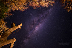 Beginner Luck (bing dun (nitewalk)) Tags: ocean road travel night creek way landscape bay nightscape shot great australia melbourne galaxy astrophotography single 12mm apollo milky samyang xt1 skenes