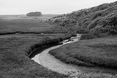 untitled-15 (Kamal H.) Tags: ca blackandwhite monochrome ptreyes abaondoned summilux50mm drakesbayoysterfarm leica240m nationalparkmisty