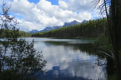 Late Afternoon Shadows (Patricia Henschen) Tags: afternoon clouds cloudy boreal forest lake lac herbert banff banffnationalpark nationalpark parkscanada parks parcs mountains mountain rockymountains rockies rocky northern canadian canada canadianrockies reflection reflections water lakelouise alberta icefieldsparkway bowrange