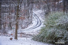 Winter Storm - January 7, 2017 (The Suss-Man (Mike)) Tags: cumming forsythcounty georgia ice nature snow sonyilca77m2 sussmanimaging thesussman weather winter winterstorm