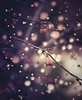 The Magic of the Season (miss.interpretations) Tags: lights garland bokeh seasonal festivities trees berries branches foliage outside christmaslights downtown castlerock colorado magic dof twinklinglights plum gold branch happy seasongreetings winter christmas hanukkah lighting tradition canonm3