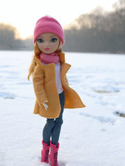Ashlynn's Winter (Mus Parvulus) Tags: ashlynnella everafterhigh eah doll winter snow customdollclothes