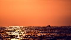 El brillo del mar (Daniel Fotografia :)) Tags: yellow exit perú sea tumbes atardecer sky playa luz sunset infinito airelibre cielo orange sol puntasal anaranjado sun gold naturaleza nature bote mar