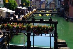 Annecy (10) / França / Francia (Ull màgic (+1.000.000 views)) Tags: annecy frança france francia nucliantic canal aigua agua water flors reflexes reflejos edifici arquitectura fuji xt1
