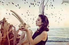 Huesos rotos (Verargb) Tags: amaterasu craneo playa pájaros caos corona diosa mitología japonesa