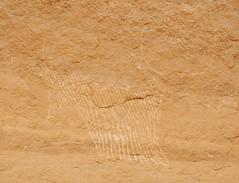 Chad Tibesti NE (ursulazrich) Tags: tschad chad ciad tchad sahara desert tibesti rockart felsbilder caveart cattle