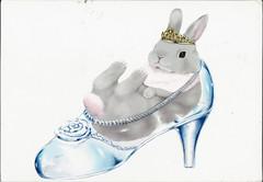 水晶鞋兔子 (lyzpostcard) Tags: china bunnies postcards hangzhou rabbits douban directswap