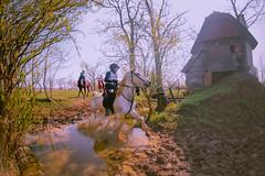 Edurance utrka u Otrovancu (antoniojurkin) Tags: horses nature croatia podravina edurance hrvatska slavonija virovitica pitomača otrovanec