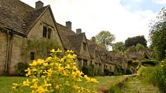ARLINGTON ROW (chris .p) Tags: uk houses summer england flower june nikon view cotswolds gloucestershire gb cotswold bibury 2015 d610 arlingtonrow