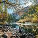 Yosemite national park - California, United States - Landscape photography
