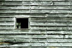 See Thru Window (Groovyal) Tags: art window glass photography sash clear glaze opening pane seethru invisable groovyal seethruwindow