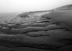 Newburgh Beach (Explored) (PeskyMesky) Tags: blackandwhite monochrome canon blackwhite aberdeenshire aberdeen northsea newburgh riverythan northeastscotland newburghbeach canoneos500d