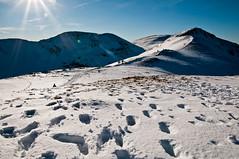 Grisedale Pike, probably (Scott Leach) Tags: coledale horseshoe lake district snow grisedale pike footprints challengeyouwinner