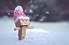SNOW!!!! (Matt_Briston) Tags: snow danbo robot snowflakes hat matt cooper nikon d7000 lensbaby