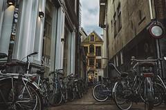 bikes for sale (berberbeard) Tags: groningen netherlands niederlande holland fotografie photography urban berberbeard berberbeardwordpresscom germany ilce7m2 itsnotatrick street bike bicycle rad fahrrad