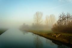 Mist-11 (stevefge) Tags: beuningen mist winter water canal landscape trees nederland netherlands nature natuur nl gelderland reflectyourworld reflections
