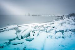 Frozen (Žèę Ķ) Tags: 2016 snowfall winter frozen snow ice landscape ocean sea seascape grey blue shadesofgrey logs driftwood beach light waterfront