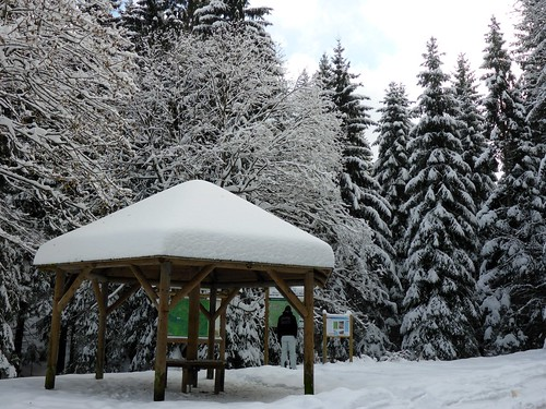 Lohberg. Naturpark Oberer Bayerischer Wald