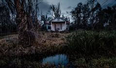 Look Beneath the Floorboards... (fuzzy_dunlop_nola) Tags: fuji xt2 dusk sky ruraldecay jeanlafitte wideangle fujifilmxt2 southlouisiana evening louisiana fujinon blue thebluehour bluehour landscape fujinon14mm nightfall rural scape fujixt2 classicchrome home mirrorless 14mm forgotten view empty abandoned neglected delapidated old dark light ruin darkness creepy vacant shack jeanlafittelouisiana crownpoint wide isolated decrepit worn uninhabited unoccupied decay