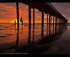 """Life is like riding a bicycle. To keep your balance, you must keep moving.""  ― Albert Einstein (Sam Antonio Photography) Tags: scrippspier lajolla sunset lowtide pier bicycle father son child sandiego california usa lifestyle travel silhouette people sunlight biker bike active action man activity water young summer sea outside nature cyclist cycling biking outdoors adventure wheel sunshine clouds rider person family fitness exercise riding sports leisure"