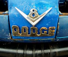 Dodge V8 (J Wells S) Tags: dodge v8 hoodornament chrome rust rusty crusty junk dodgetruck fastiquesrodcustomcarclub sign dodgepickuptruck ratrod pumpkinrunnationalscarshowandswapmeet clermontcountyfairgrounds owensville ohio logo emblem