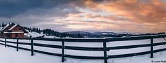 Cabana Motilor (Lucian Nuță) Tags: cabana motilor marisel romania sunset cluj landscape winter nature