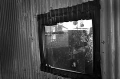 _R016012 (yukiosakaue) Tags: ricohgr gr reflection horizon bw blackandwhite border b