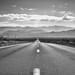 Standing in the Middle of a California Highway (Black & White)