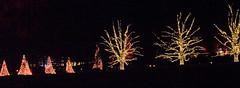 CW360 Longwood Gardens Christmas Lights (listentoreason) Tags: usa night america canon unitedstates pennsylvania scenic favorites places longwoodgardens ef28135mmf3556isusm holidaylighting score30