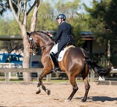 150614_Clarendon_2306.jpg (FranzVenhaus) Tags: horses sydney australia riding newsouthwales athletes aus equestrian supporters riders officials dressage spectatorsvolunteers