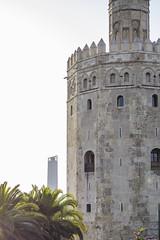 Torre Oro y Pelli (josedportilla) Tags: luces sevilla torre altas paseo oro peli composicion pelli