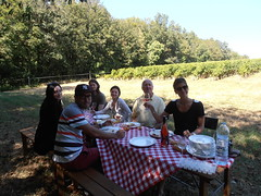 "Levin Havest Picnic - Clos Rosarie • <a style=""font-size:0.8em;"" href=""http://www.flickr.com/photos/133405556@N08/19892292619/"" target=""_blank"">View on Flickr</a>"