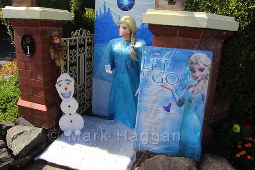 Elsa Scarecrow