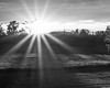216/365, Black & White Sunset (Robin Penrose) Tags: 365 day216 2015 bwlandscape 201508 day216365 365the2015edition 3652015 4aug15
