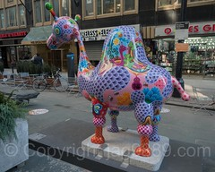 Dromedary Camel Sculpture (2015) by Hung Yi, Garment District, New York City (jag9889) Tags: installation jag9889 usa garmentdistrict artwork manhattan publicart broadway newyork outdoor 2016 animal culture camel artist granite art hungyi midtown contemporary newyorkcity carnival enamel colorful steel 20161128 sculpture taiwan costumes creature fasnacht festival masks ny nyc skulptur streetart unitedstates unitedstatesofamerica us