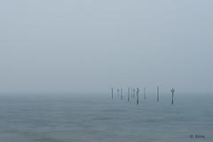 confused (Just me, Aline) Tags: 201612 alinevanweert tholen fog mist sea water zee le longexposure langesluitertijd leefilter littlestopper