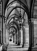Neo-gothic Rathuas Vienna (Blackburn lad1) Tags: austria vienna architecture archway arch lamp monochrome blackandwhite buildingdetail building canon column visit tourist neogothic
