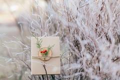 Winter Wedding Pack (Yuliya Bahr) Tags: packaging weddingphotographer weddingphotographygermany winter design snow plants florisitc botanical weddingpackage gift xmas red green hochzeitsfotografberlin hochzeitsfotografhamburg hochzeitsfotografbayern tree