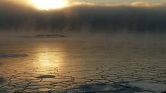 Sea smoke at -20°C (Kallahdenniemi, Helsinki, 20170106) (RainoL) Tags: geo:lat=6018410208 geo:lon=2515484002 geotagged fin finland helsingfors helsinki nyland uusimaa 2017 201701 fz200 january winter 20170106 balticsea cold ice kallahdenniemi kallahti kallvik kallviksudden sea seashore vuosaari drottningen kuningatar seafog seasmoke prinsessa prinsessan sunrise nordsjö